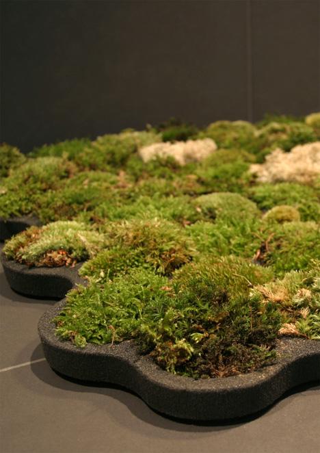 moss_carpet3.jpg
