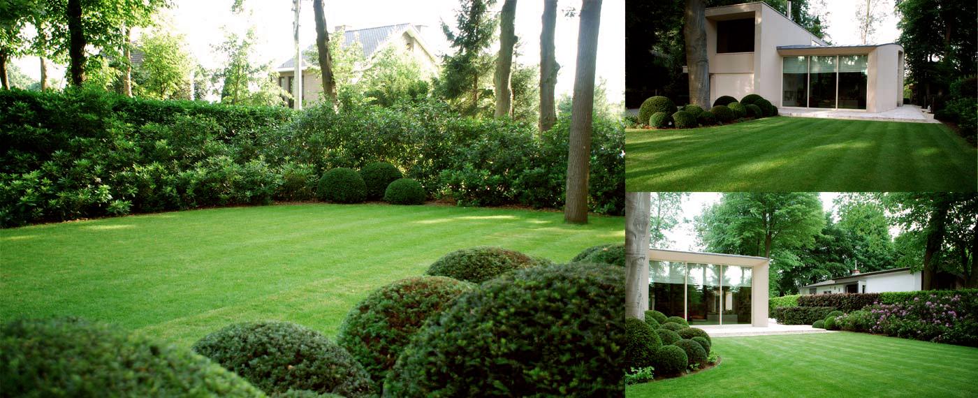 Hortensia annabel strak split zwarte schutting tuin inspiratie pinterest tuin google - Tuin fotos ...