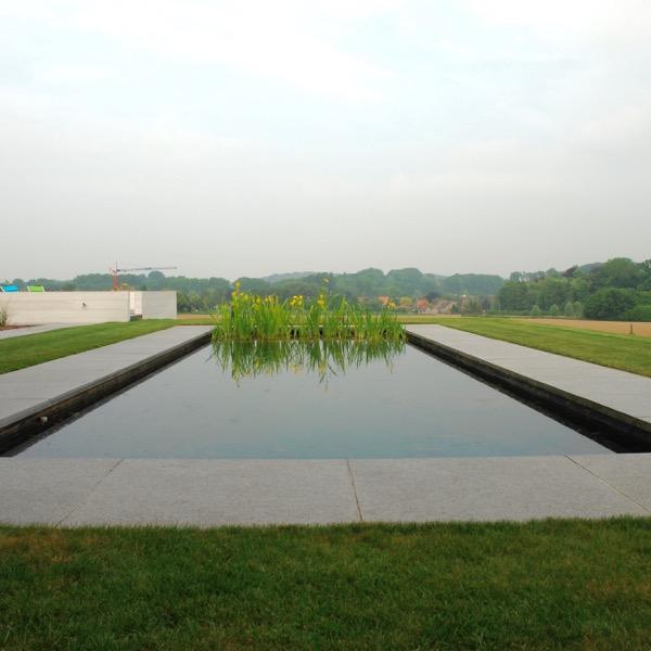 zwemvijver-iris